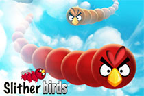 SlitherBirds