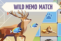 Wild Memo Match