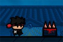 I am the Ninja 2
